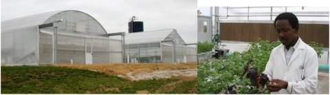 Hydroponic research Facility, left and Dr. Johnathan Egilla, right