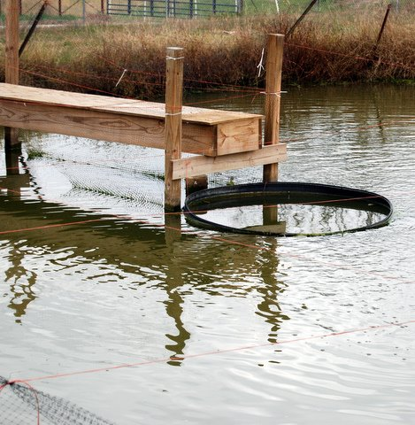 Facilities in aquaculture lincoln university for Fishing docks near me